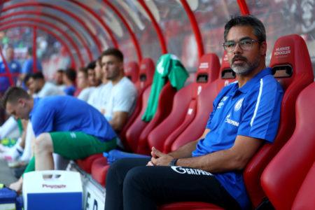 Der FC Schalke 04 und Trainer David Wagner stehen vor einer Saison mit vielen Fragezeichen., Netherlands.