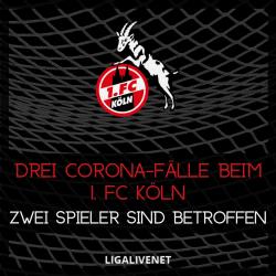 1. FC Köln Corona