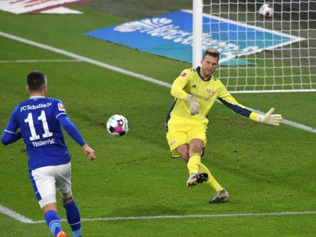 Ibisevic Schalke Rauswurf